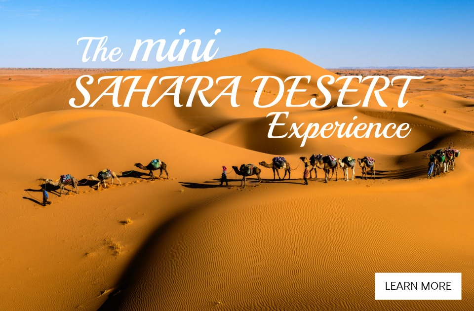 The Mini Sahara Desert Experience