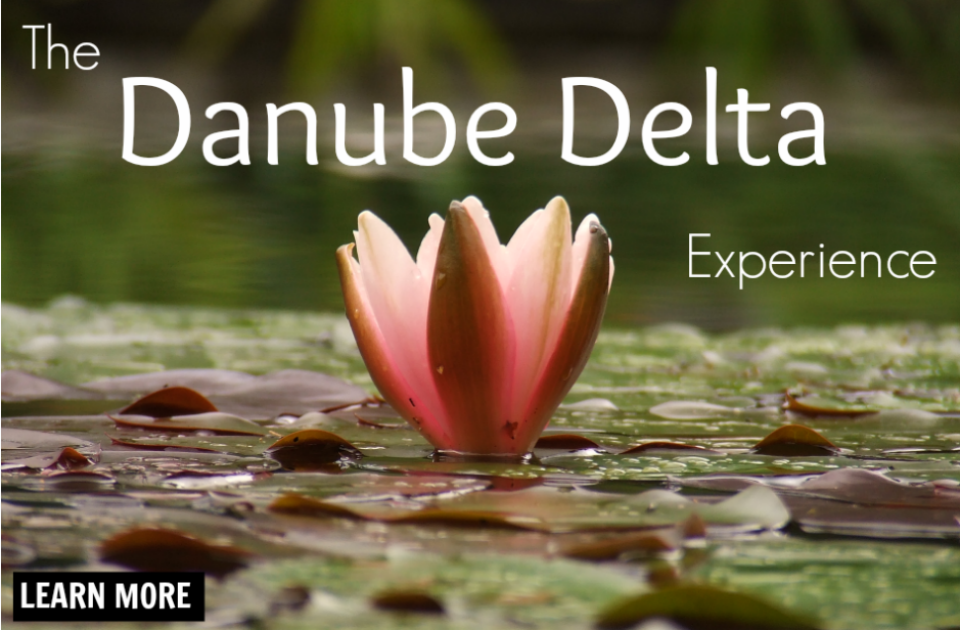 The Danube Delta Experience