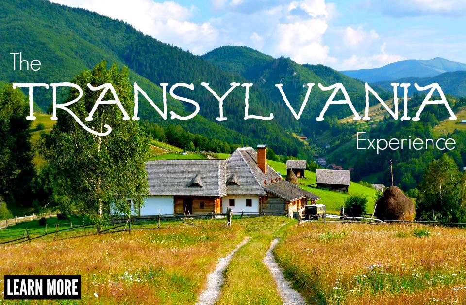 The Transylvania Experience