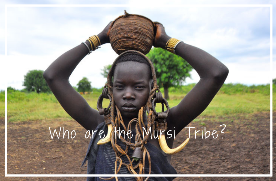 Who Are The Mursi Tribe?
