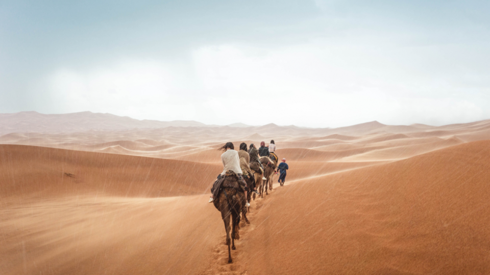 People in sahara desert on camels
