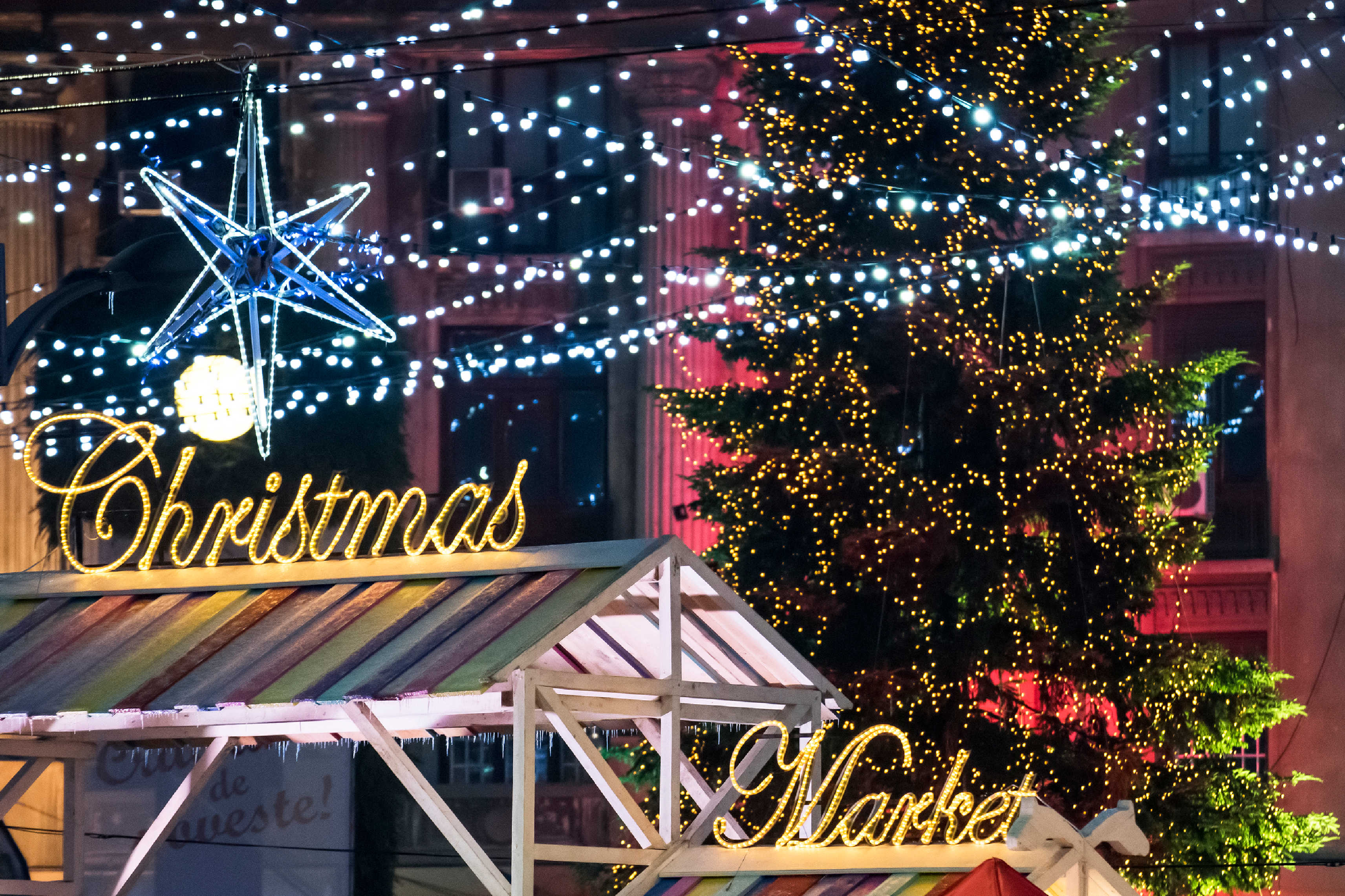 Christmas Markets and Unforgettable Trips