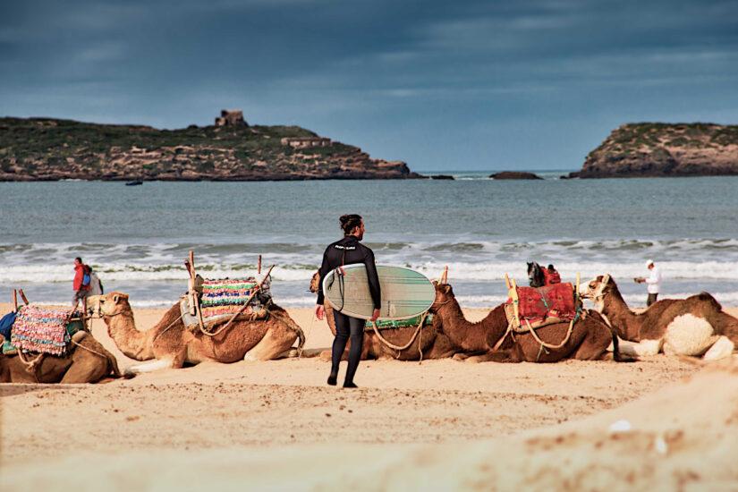 Essaouira surfing